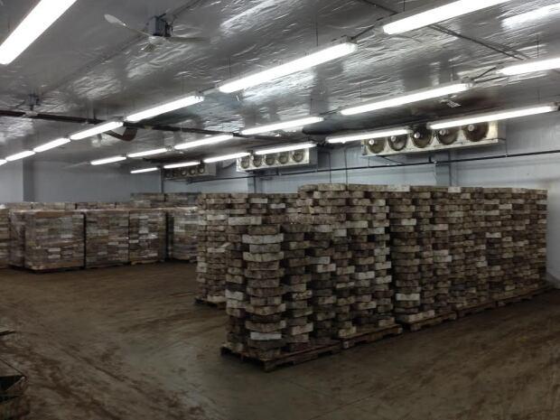 Worm Warehouse