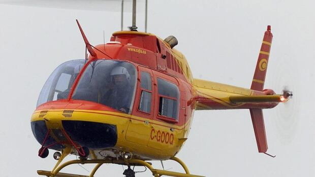 A Bell 206 helicopter is shown flying in 2003 near St-Honore, Que. A Bell 206 crashed in July 2013 in Manitoba, killing the pilot.