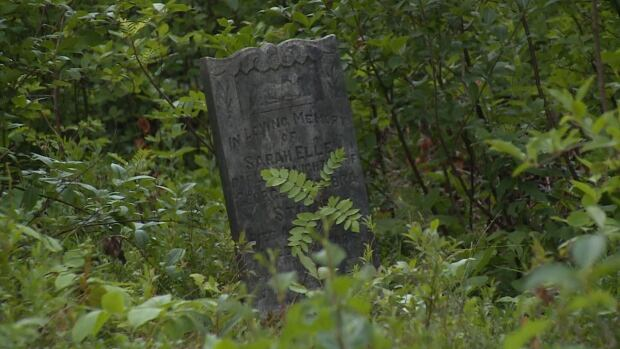 A cleanup of this abandoned cemetery in Mount Moriah will begin in a few weeks.
