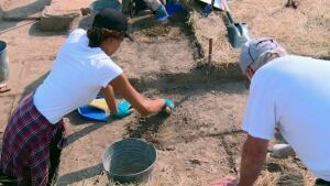 Archaeologist dig