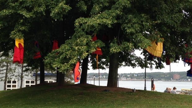 The Lifesaving Society of Nova Scotia is hanging lifejackets on trees across the province to remind people to wear the devices.