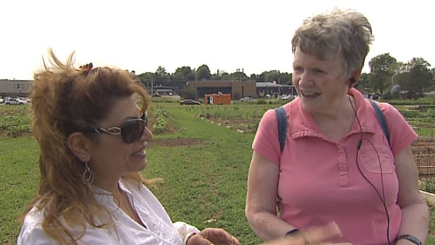 The legacy garden on the old experimental farm in Charlottetown is turning into a meeting place for immigrants and established Islanders.