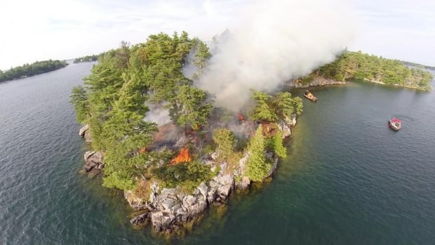 Parks Canada has set an island on fire to help a rare type of pine tree flourish.
