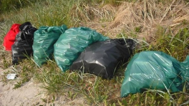 Volunteers and town workers picked up bags of garbage from the beach in Banting Memorial Park after partygoers left behind their mess over the weekend.