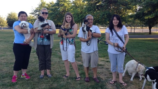 Dover Park dog owners want their off-leash area back. It was recently moved to McCallum Park.