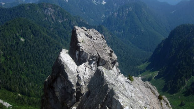 A man fell from North Vancouver's Crown mountain to his death on Wednesday, a search and rescue leader said.