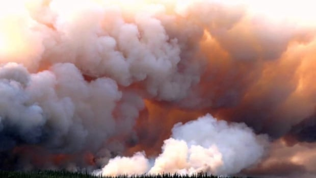 A report conducted by the United States Department of Agriculture says smoke and ash from forest fires can seep into nearby bodies of water, affecting temperature, pH level and ultimately the destination of the fish.