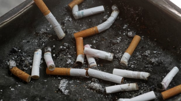 Cigarette filters, shown in this file photo, contain cellulose acetate fibres that are being used by researchers in Seoul.