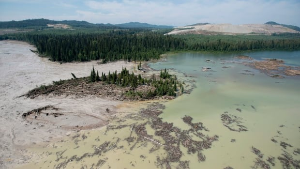A aerial view shows the damage caused by a tailings pond breach near the town of Likely, B.C. Tuesday, August, 5, 2014. The pond which stores mining waste from the Mount Polley Mine had its dam break on Monday spilling its contents into Hazeltine Creek, Polley Lake, and Quesnel Lake, causing a wide water-use ban in the area.