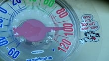 Dog thermometer