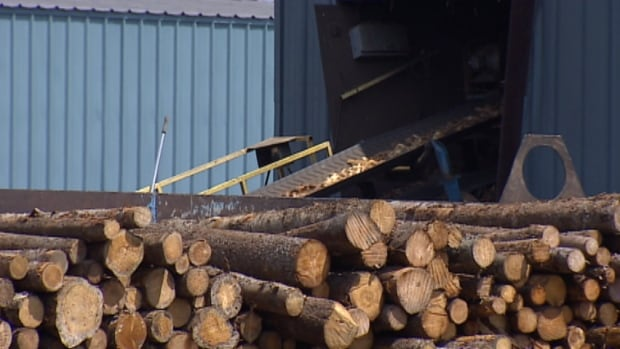 There are more than 5,000 direct employees in the forest industry in Nova Scotia.