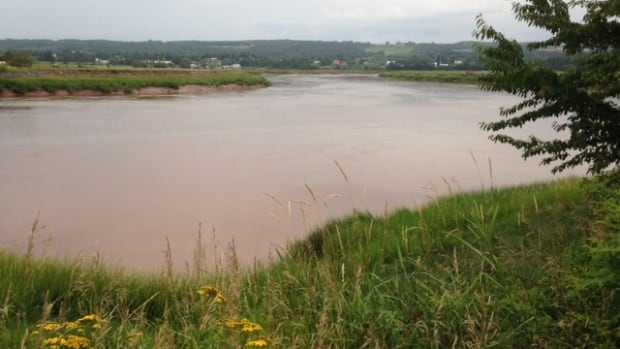 The Cornwallis River was one of three rivers tested last fall. All had elevated levels of fecal coliform bacteria.