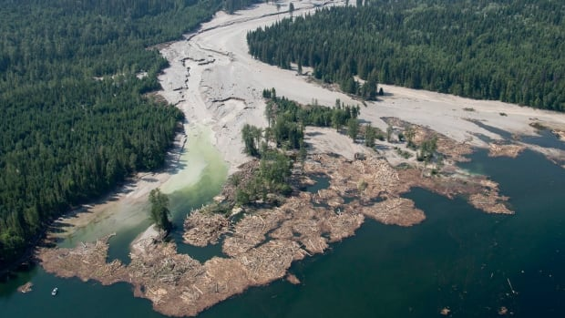 Contents from a tailings pond from the Mount Polley Mine is pictured going down the Hazeltine Creek into Quesnel Lake after a spill last August.
