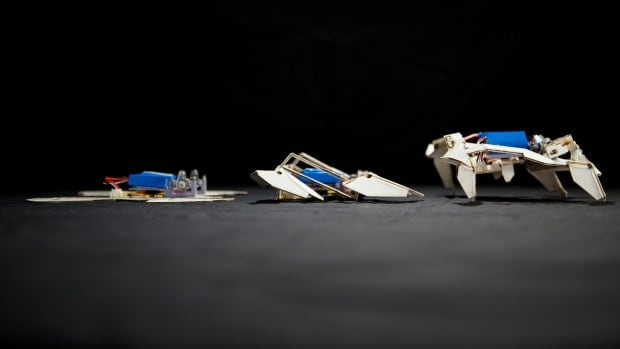 After the installation of tiny batteries and motors, the paper robot gets up, folds itself into the proper shape and is ambling across the table in just four minutes.