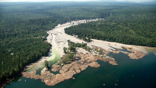 An aerial view shows the debris going into Quesnel Lake from the Mount Polley mine tailings pond breach on Monday.