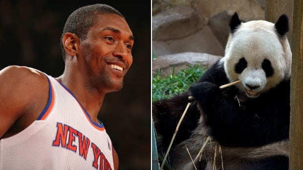 The man formerly known as Metta World Peace and also formerly known as Ron Artest, left, and a panda bear.