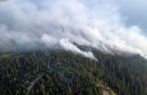 Slocan Park fire