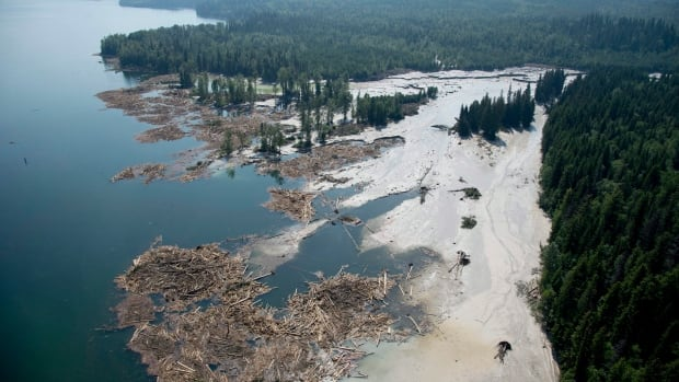 An aerial view shows the debris going into Quesnel Lake caused by a tailings pond breach near the town of Likely, B.C., on Tuesday. The pond, which stores toxic waste from the Mount Polley mine, had its dam break on Monday. Water-drinking bans for various areas are slowly lifting.