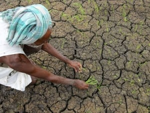 monsoon india drought