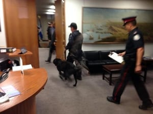 Bomb sniffing dogs enter the mayor's office.