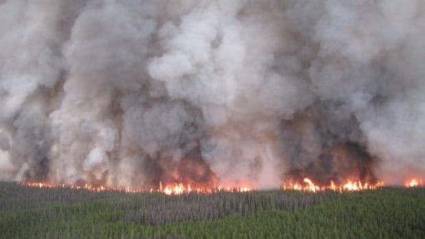 Chelaslie River fire