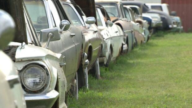 car auction spruce grove