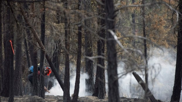 Authorities say several of these wildfires are located in very steep and dangerous terrain and the burn-offs are necessary to limit growth.