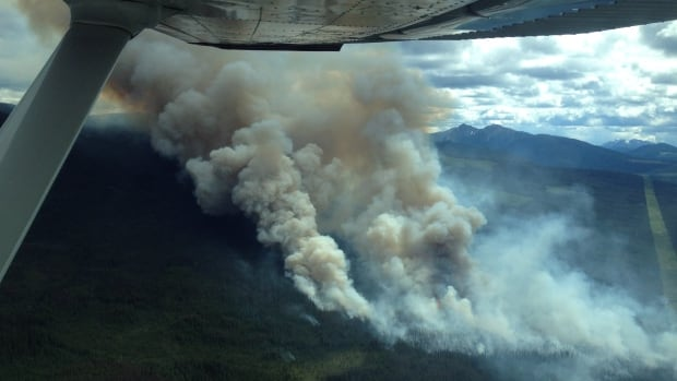 The Tenakihi wildfire, about 50 kilometres west of Williston Lake, is one of about 84 large wildfires burning in B.C.