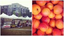 bridgeland market