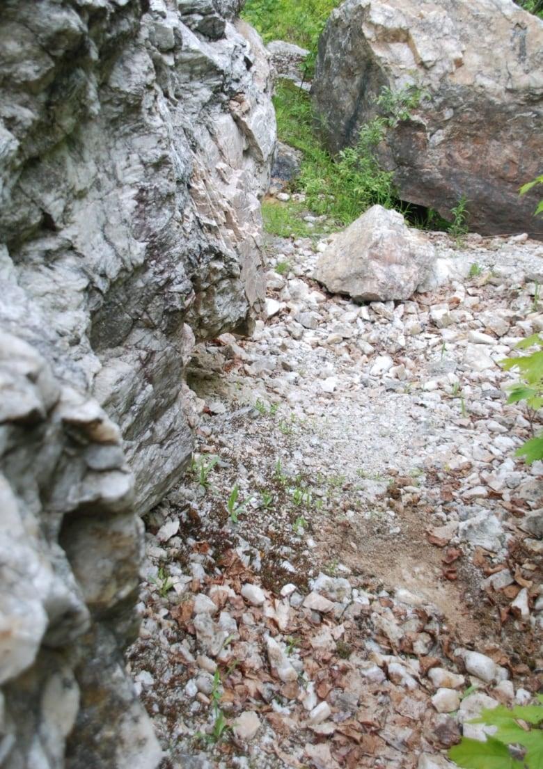Treasure hunting for white quartz, red granite | CBC News