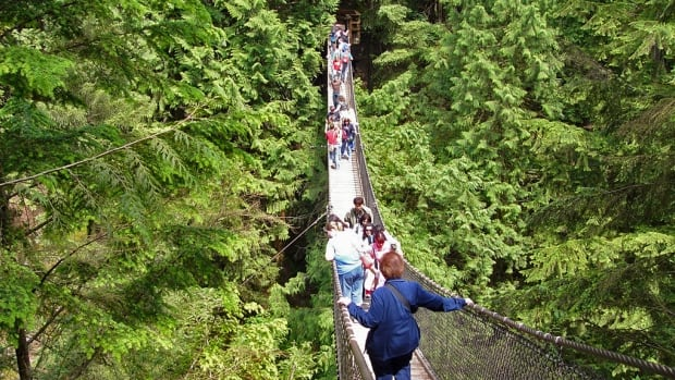 The group were rescued underneath Lynn Canyon suspension bridge on Vancouver's North Shore.