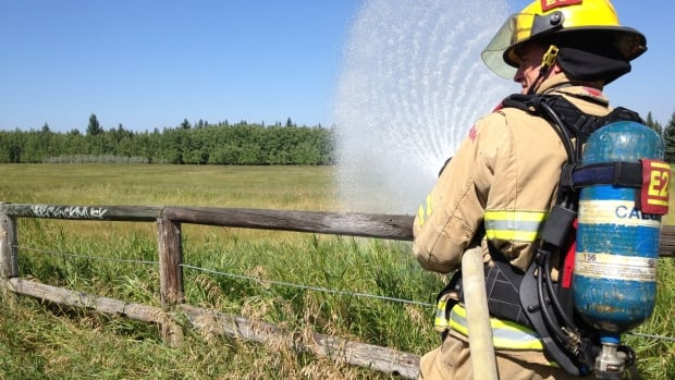 Calgary firefighters are watering the dry grass in five city parks as part of their training in using water pumps and hoses.