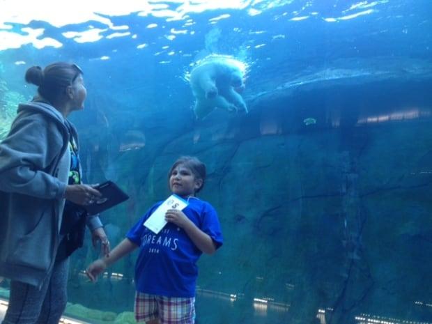 Assiniboine Park Zoo Wildest Dreams Event