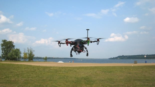 Ottawa Drone Geese
