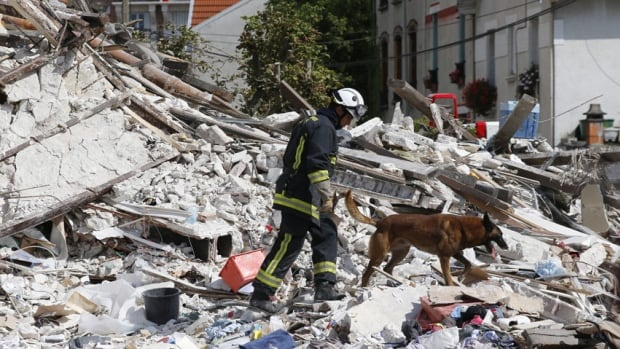A French firefighter and his dog search in the rubble of a building after an explosion collapsed it in the Paris suburb of Rosny-sous-Bois on Sunday. The explosion collapsed a four-storey building, killing a child and leaving at least 10 people trapped in the rubble, fire department officials said.