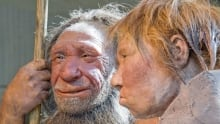 Germany Neanderthal Dating