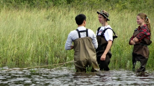 High school students conduct field research in the Experimental Lakes Area.