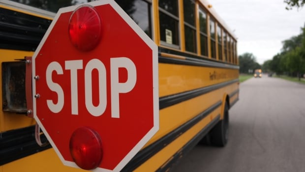 All boards can learn from Toronto school bus 'crisis': ombudsman