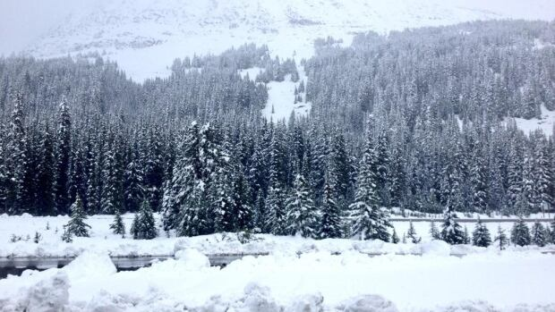 Tom Graham of the Prairie Storm Chasers tweeted this picture of snow in Highwood Pass in Kananaskis Country today. The high-elevation area is located near Upper Kananaskis Lake.