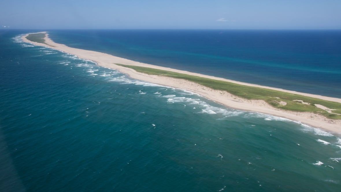'Harsh conditions' help force shutdown of Sable Island wind project