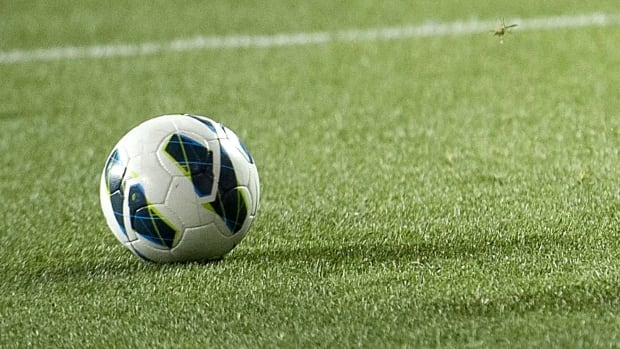 Soccer Northwest says it will make its latest pitch to Thunder Bay city council next week for a permanent indoor facility.