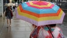 Hamilton Rain