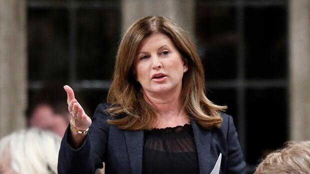 Health Minister Rona Ambrose announced Canada will send protective equipment in support of the WHO's fight to contain west Africa's Ebola outbreak.