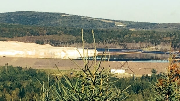 A liner underneath a salt-water tailings pond at the former Cassidy Lake potash mine near Norton, N.B., has been leaking since 2008.