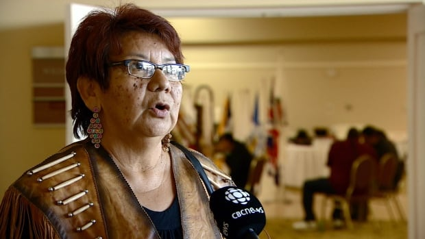 Rose Laboucan, chief of the Driftpile Cree Nation in northern Alberta, drafted a resolution calling on Alberta's Premier Jim Prentice and Prime Minister Stephen Harper to support a national inquiry  on murdered and missing indigenous men and women.