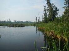 rob-mark-beaver-dam