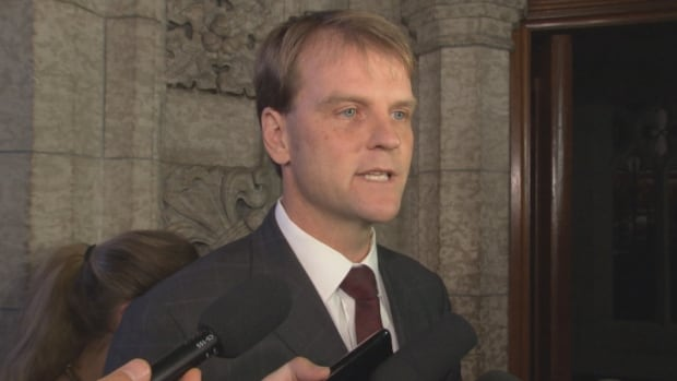 Citizenship and Immigration Minister Chris Alexander says the government is looking at revoking passports of Canadians who are suspected of working with militant groups abroad.