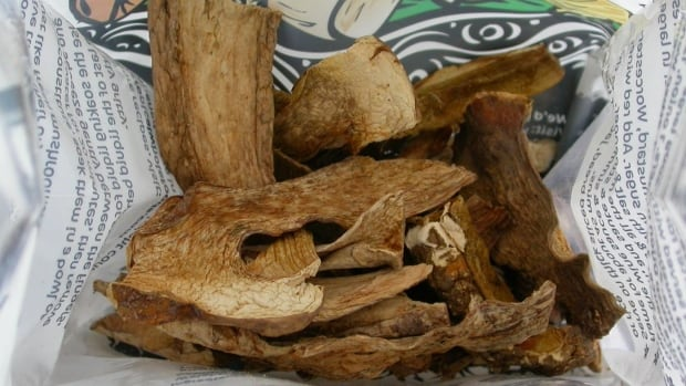 Samples of the new mushroom species are shown in the original packet, purchased at a grocery store in southwest greater London.