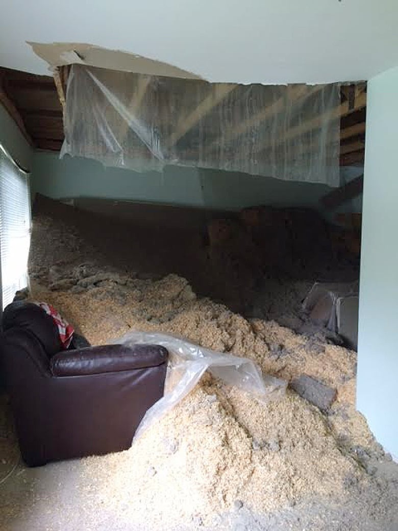 Winnipeg family escapes as living room ceiling crashes down | CBC News
