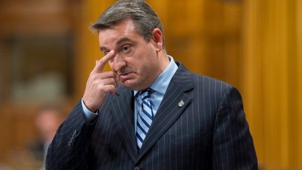Paul Calandra, parliamentary secretary to Prime Minister Stephen Harper, delivers an apology in the House of Commons Friday.